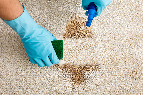 Address the flaws in your carpet